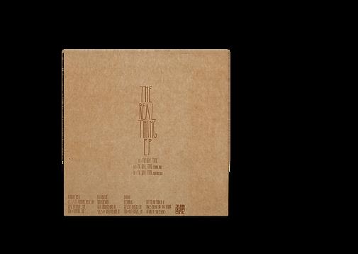WEBSITE back Vinyl Record PSD MockUp.png