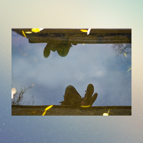 reflection esrin.png