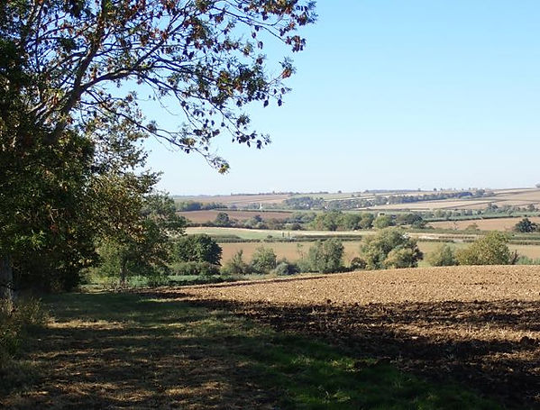 View from Fineshade wood towards Wakerle