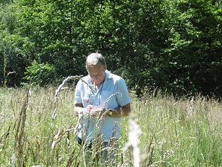 Fineshade Wood Wildlife Recording