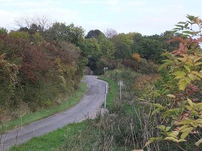 Approaching Fineshade Wood