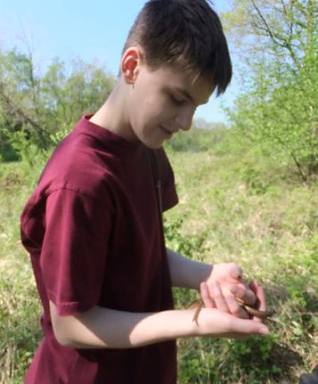 Fineshade Wood reptile monitoring