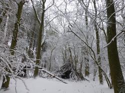 Den in the snow