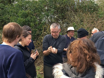 Fineshade Wood reptile training
