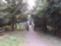 Hide in Fineshade Wood