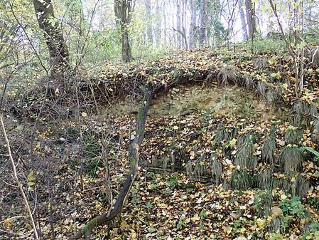 Quarry in 511 St Mary's Wood.jpg