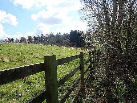 Sheep Field Pod site (5).jpg