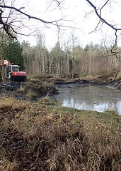 Middle Pond work 1.jpg