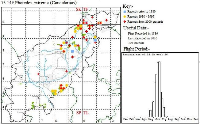 Distribution of Concolorous moth