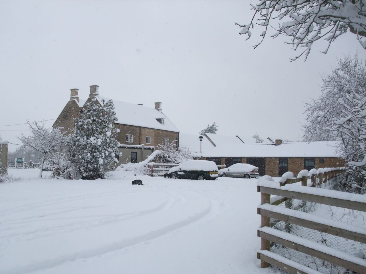 Top Lodge in the snow