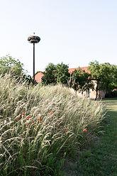 Garten-94.jpg