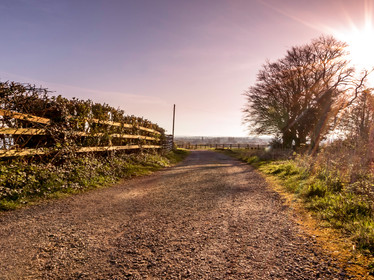 Country Path.jpg