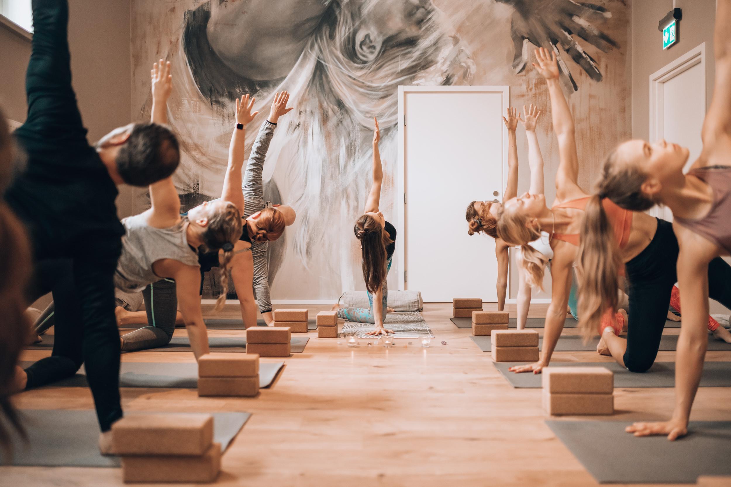 Roots Yoga Class 39(1)