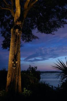 Landscape Lighting Bluffton SC