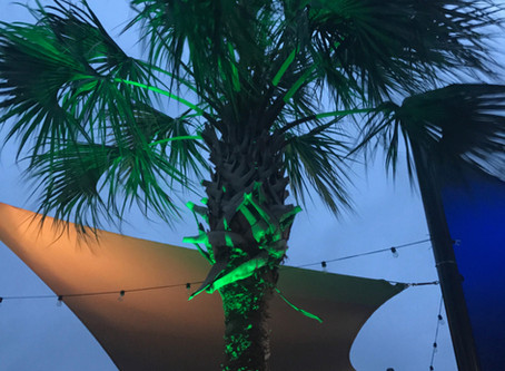 Color LED's! Recent Commercial Project, Panini's (Beaufort Waterfront Park).