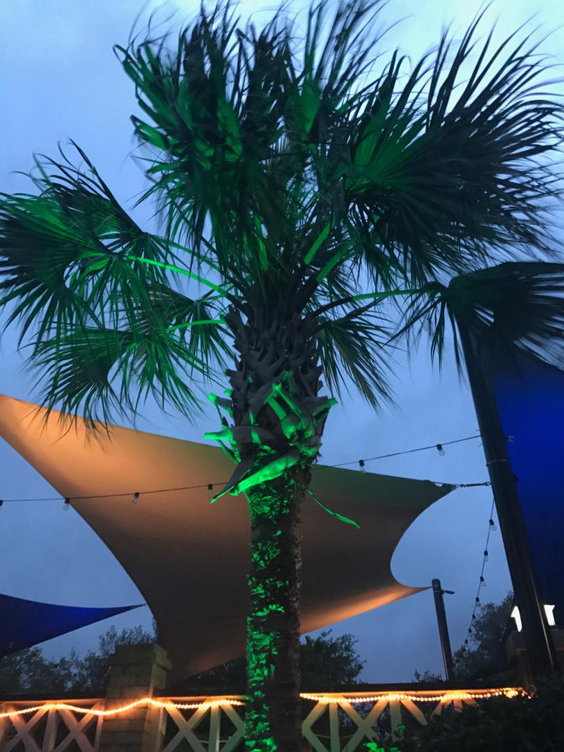 Color LED's, Beaufort Murphy Outdoor Lig