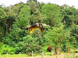 Farmer's home nestled in the woods
