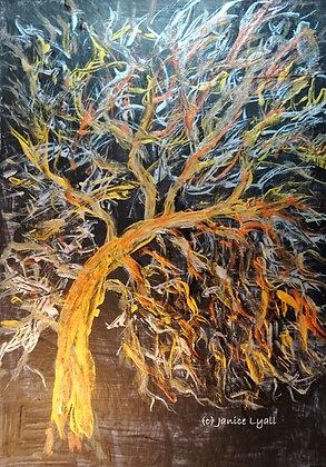 'Crab Apple Tree'