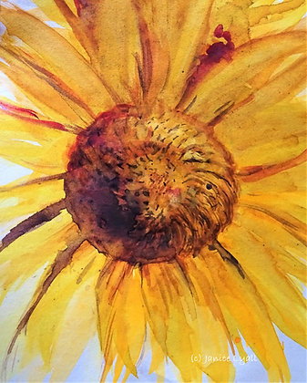 'Summer Sun'