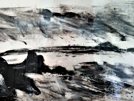 'Winter Storm'