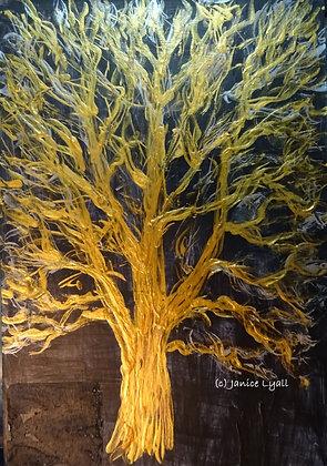 'Sycamore Tree'