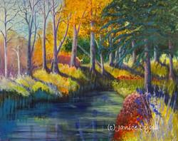 'Autumn Colour' by Janice Lyall