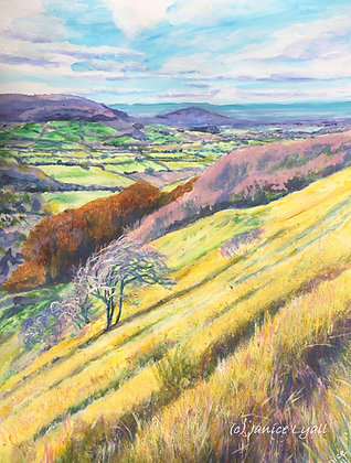 'Crickley Hill'