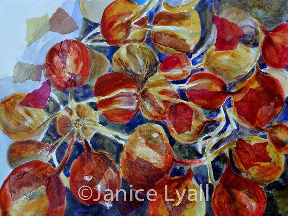'Tray of Onions'