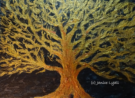 'English Oak Tree'