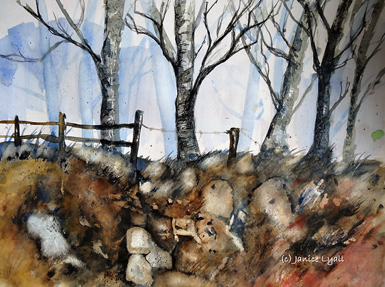 'Late Autumn in Gloucestershire'