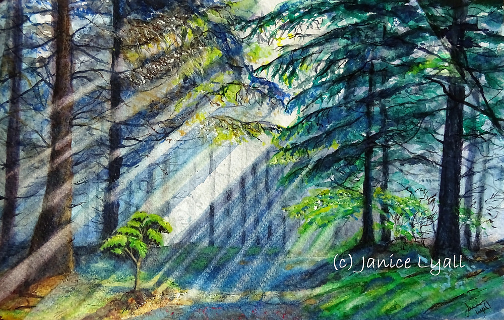 Watercolour painting of forest scene in early spring by Janice Lyall