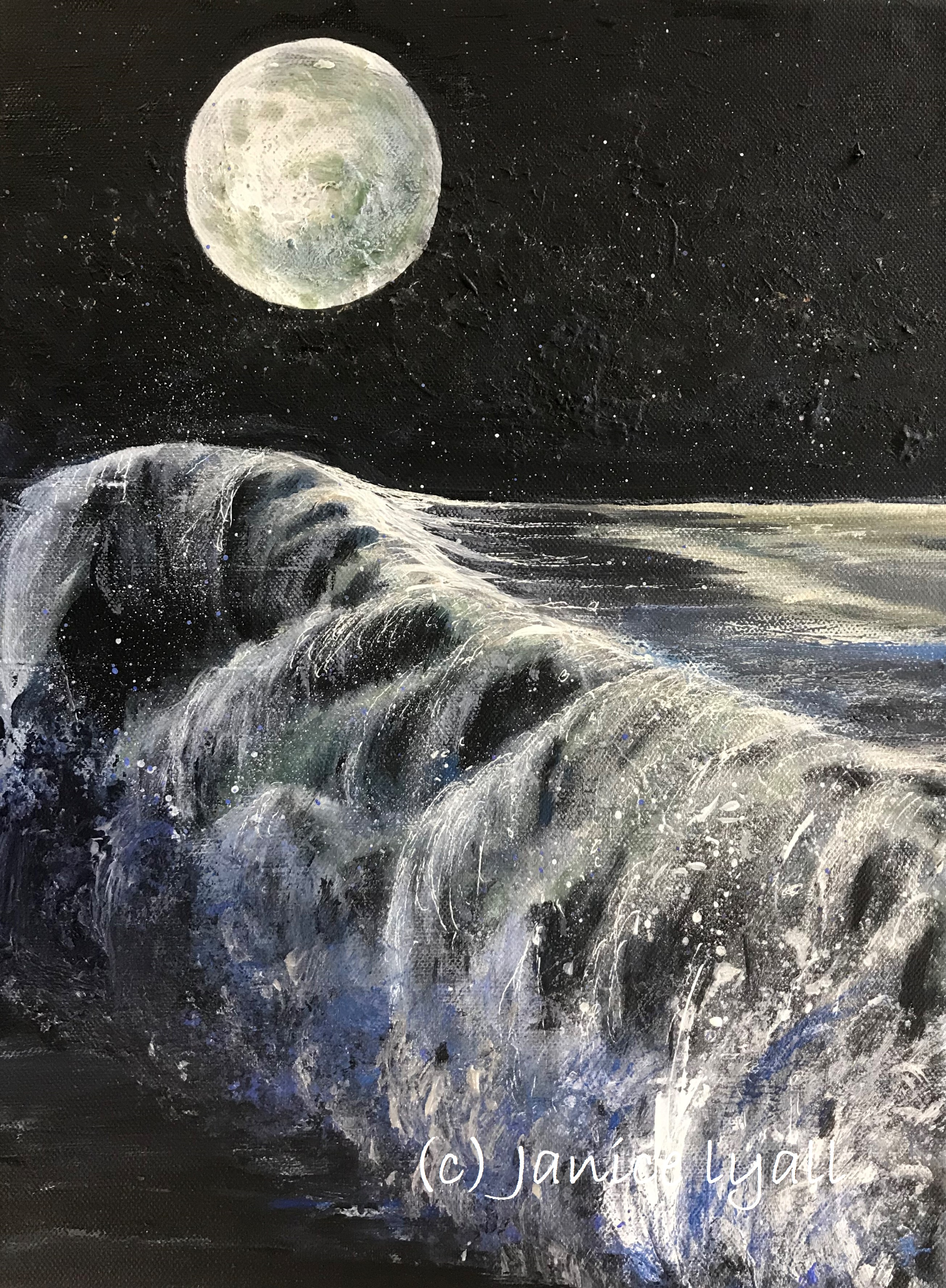 'Severn Bore in Moonlight' by Janice