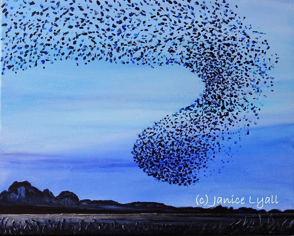 Mumeration of starlings painting by Janice Lyall