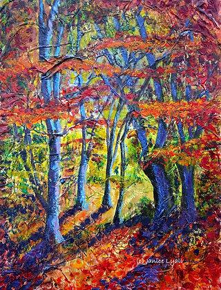 'Carpets of Autumn Colour'