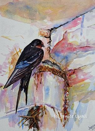 'Swallow's Nest'
