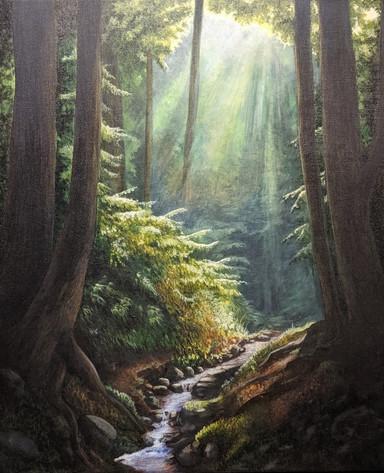 Forest Stillness