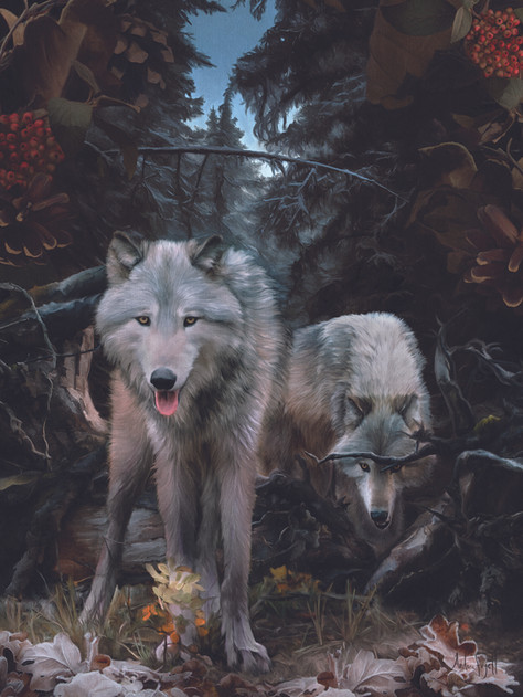 Timber Wolves Painting