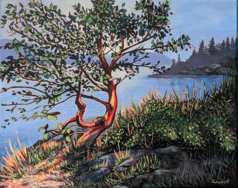 Arbutus Tree During The Drought  in Vancouver 2021