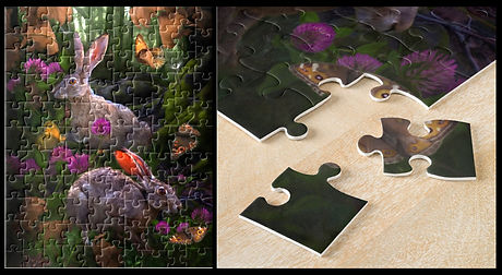 The Hare Puzzle.jpg