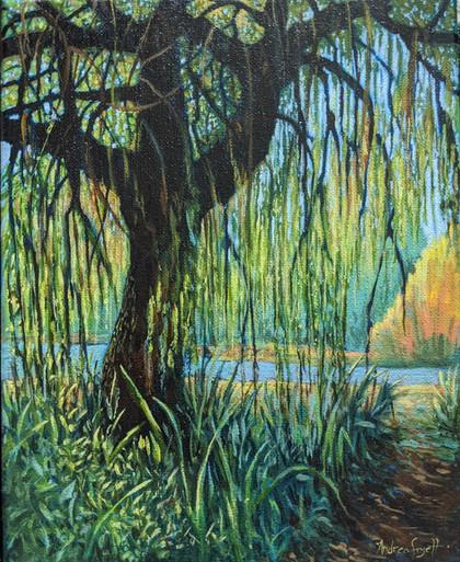 En Plein Air Willow Tree in Trout Lake Vancouver