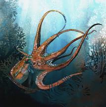 Octopus1_Socialm.jpg