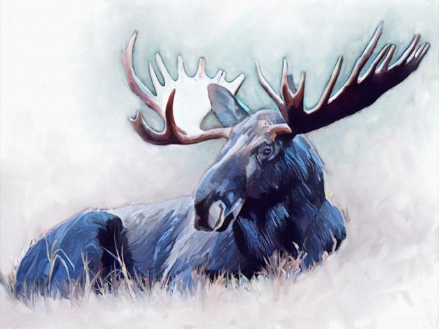 Moose_12x16.jpg