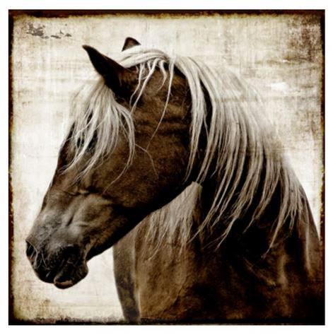 horse art work in san mateo