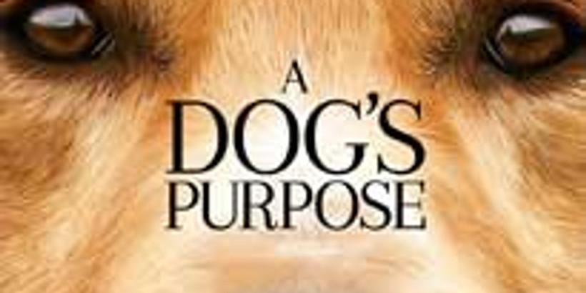 Family Movie Night - A Dog's Purpose***FREE***