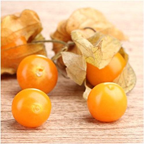 1 Pint Ground Cherries
