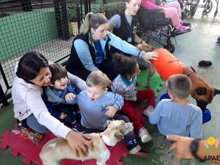 Visita Equipe Novo Cão