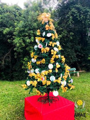 Árvore da Apae - Natal no Coração