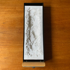 Loft 112   Boxed Stories Gallery: Ammonite