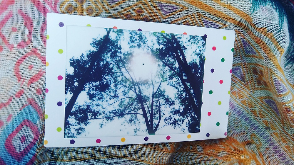 photo taken with my instax camera during this past Monday's total eclipse.