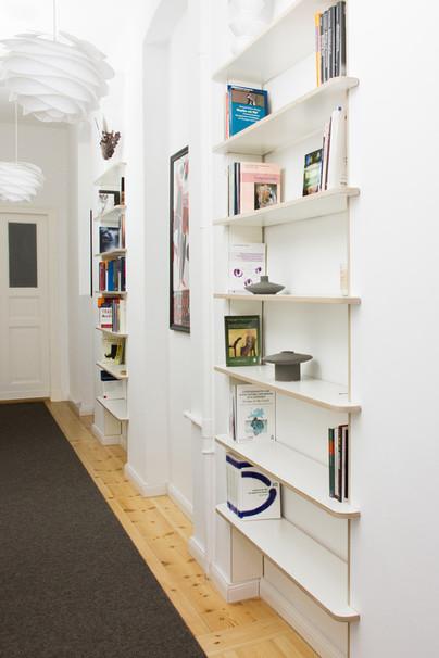 bookshelves corridor